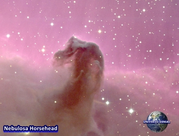 horsehead_noao