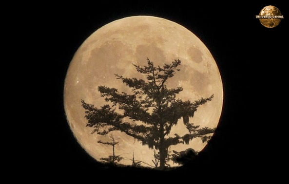 Como seria a Terra sem a Lua-